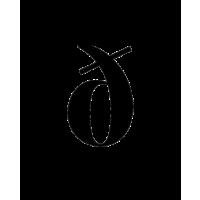 Glyph 161